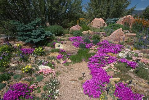 Rock garden_XG-CoSpgsCO_LAH_9929